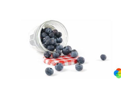 Los arándanos azules o rojos  y sus beneficios